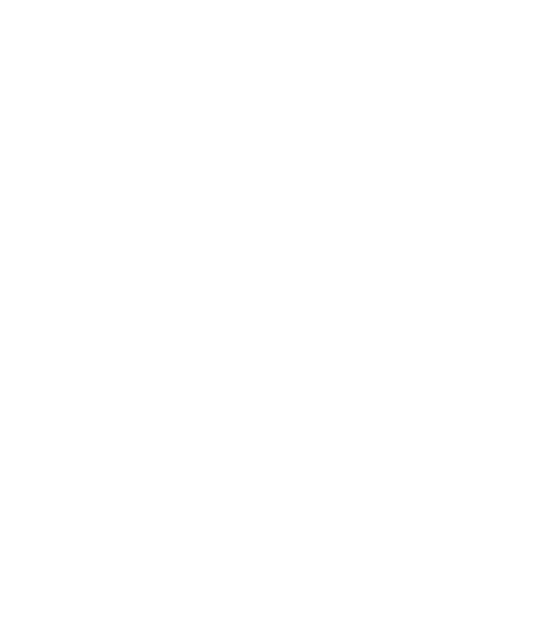 White vertical Zcash logo