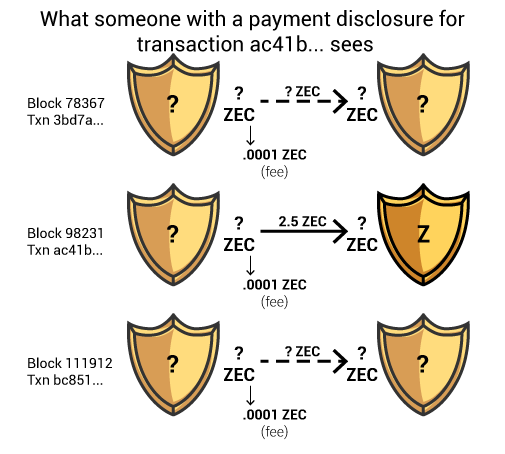 What data the owner of a payment disclosure for a specific transaction sees