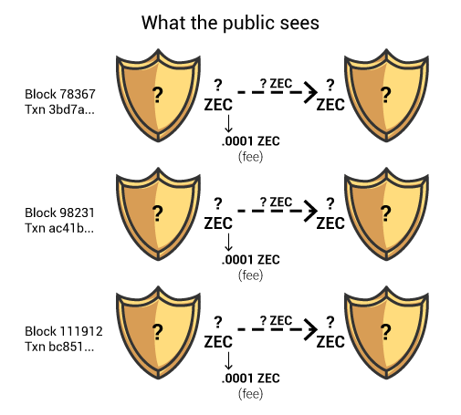 What data the public sees on the Zcash blockchain